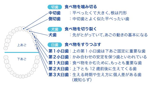 img-ha-role5