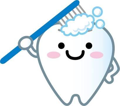 歯磨きの回数について