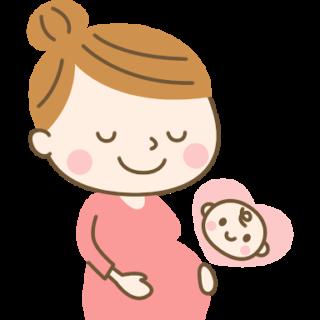 胎児に喫煙が及ぼす影響